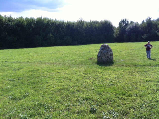 A large rock in the middle of a field, for no apparent reason