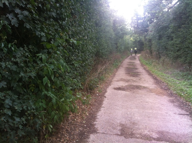 A view along the path from number 6. Approaching are two horsey muggles