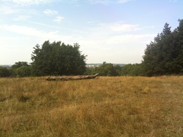 A view west from the top of Featherstone Hill within Arandene Open Space. A few trees in the near distance give way to the view of houses and transport links that stretch into the distance.