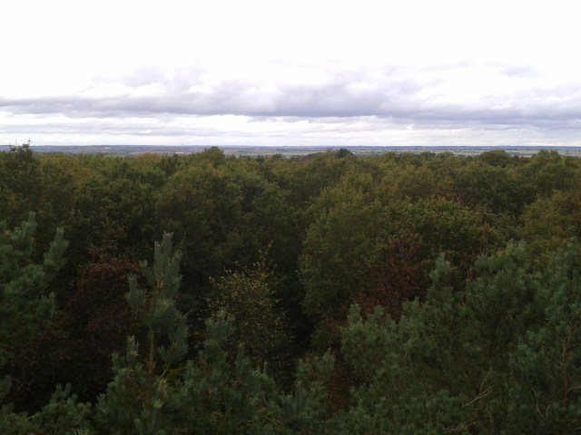 This picture was taken from the tree top viewing platform looking out across Salsey Forest and Northamptonshire