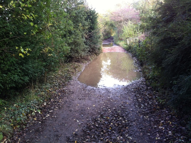 A lane stretches off into the distance. The foreground is taken up by large puddles that completely block teh path from side to side
