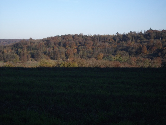 A wide and open landscape view looking North East from Stubbings Wood in Tring. Picture taken by Sam