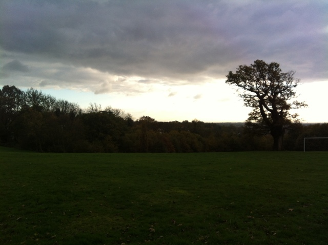 This picture is taken from the top of the Mill Field and looks west across an open urban landscape. The sun is low and illuminates only a portion of the sky whilst the trees in the foreground are cast into sillouette. A lone prominet tree stands out to teh right of the frame. The picture appears moody and foreboding.