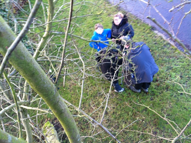 Sam and Shar are pictured at the base of the tree. The photo is taken from up the tree. They look up whilst Geoff and Melissa extract the log and sign.