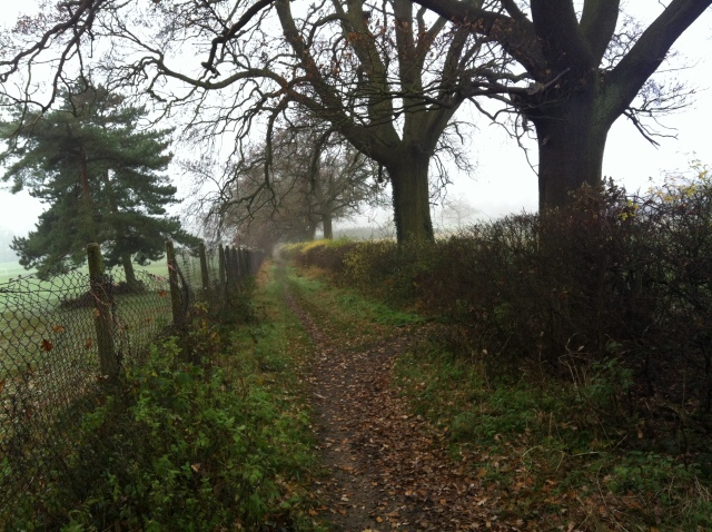 A footpath stretches off into the foggy distance
