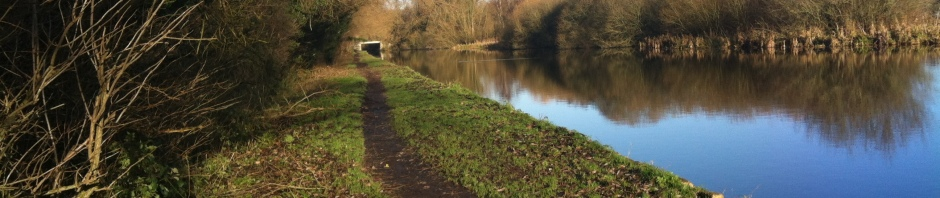 A longshot view of the Grand Union Canal stretching off into the distance. The water is still and there is no sign of barges or people. The season is obviously winter