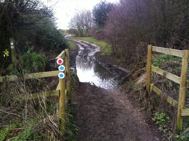 A view along a very muddy footpath, thankfully we were going in the other direction!