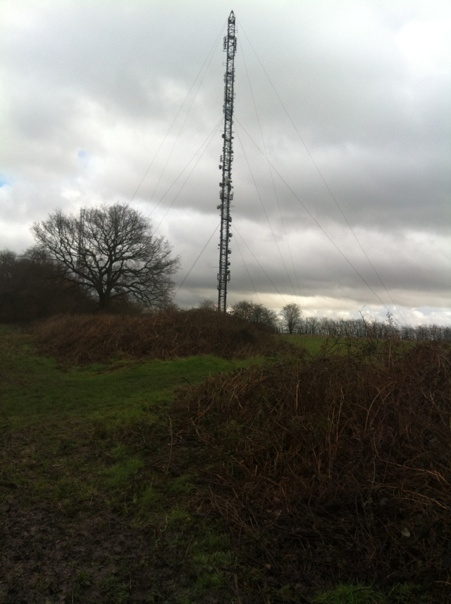 The 100m repeater aerial located at Pimlico is a relay for teh main London Transmitter at Crystal Palace