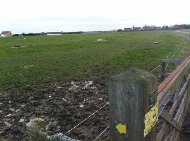 This picture taken from the kissing gate at the end of the footpath from the high street shows the view across the pony field. Thankfully we did not have to cross the field as the mud was... well muddy.