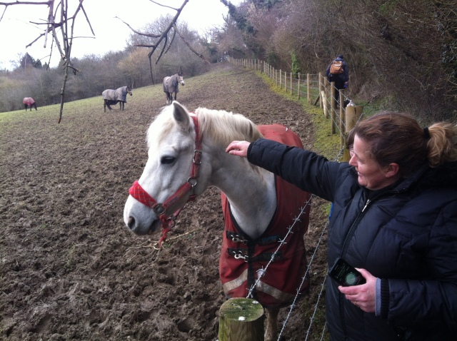 Shar pats a friendly horse on our way up the hill