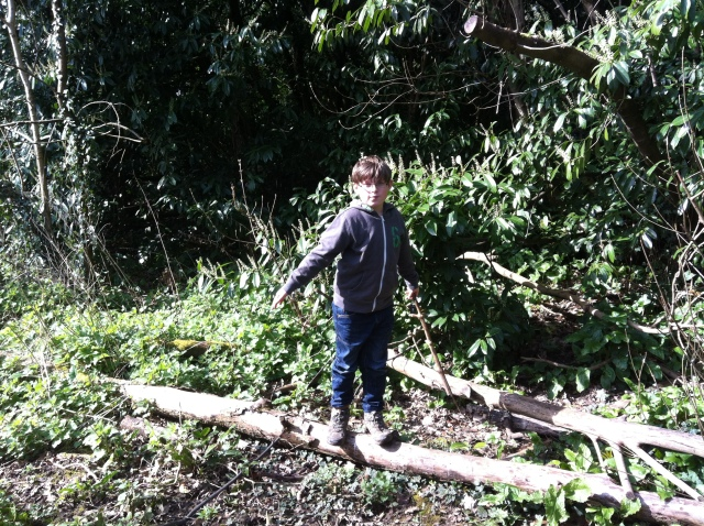 Sam is pictured standing on a couple of logs that look a little like a giant's pair of chopsticks.