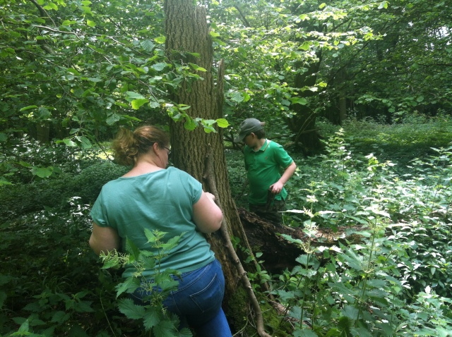 Shar looks on as Sam tries to extract the next clue from the stinging nettles.