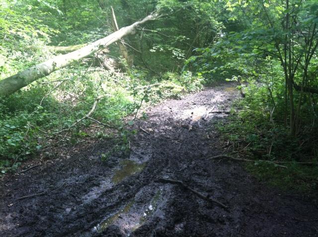 A big path of mud