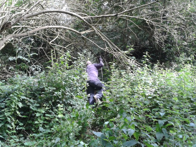 Paul is pictured climbing up a steep back through head high nettles