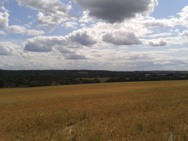 A pleasant countryside stretches out in front of the camera. In the distance somewhere is bound to be a town.