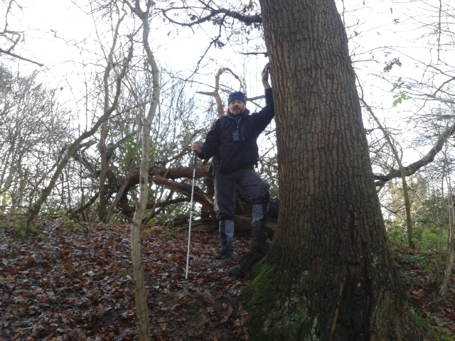 Paul stands leaning on the trunk of a large Oak tree. He is elevated above the camera position as the tree is on a steep slope.
