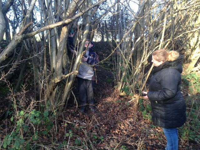 Shar looks on from the path as Sam stretches to retrieve the cache that is lodged in a tree a short way up a bank