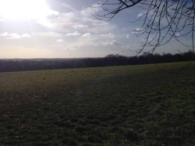 A wide open vista stretches before the lens. The foreground is not filled with much other than a field but the view stretches into the distance towards, presumably, London in the distance.
