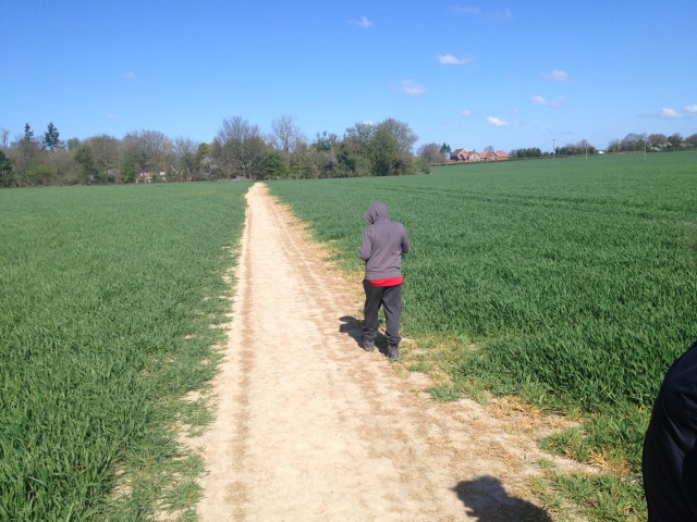 Sam walks away from the camera along a wide footpath through open fields. The light dusty colour of the path constrats heavily to the fields that it passes through.