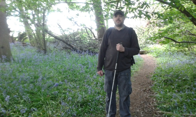 Paul stands on a woodland path with patches of Bluebells on either side