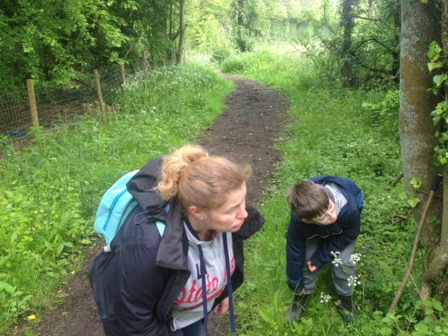 Sam and Shar are searching the bushes for a geocache