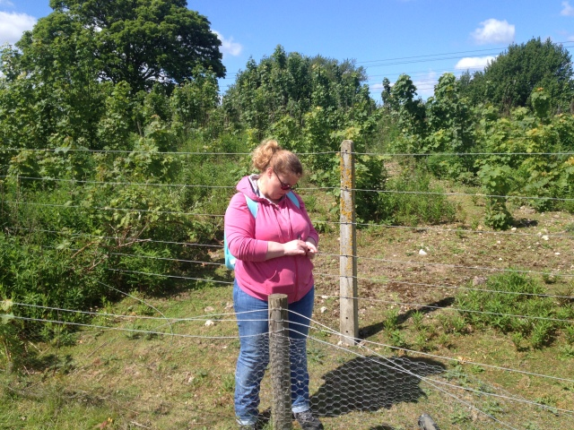 Shar stands on the far side of a thin wire fence, searching for the cache.
