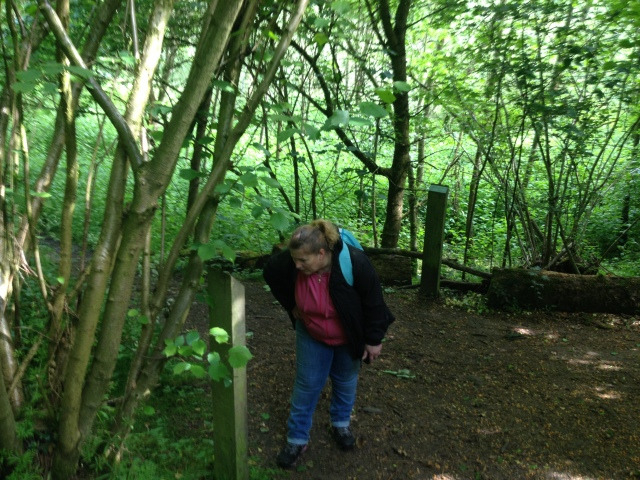 Shar stands in the woods reading a plaque that dedicates a tree to the momory of departed loved ones.