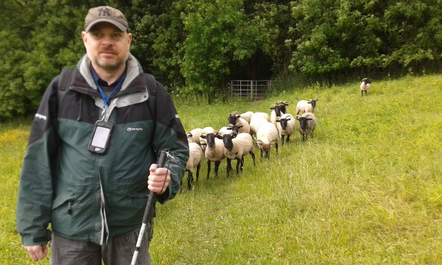 Paul stands in the middle of a field with a group of around 20 black faced sheep standing behind him