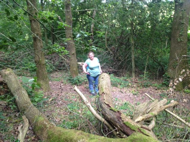 Shar stands on a woodland path.