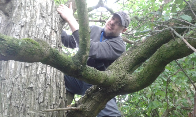 Paul is a few feet off the gorund up a tree retrieving a cache