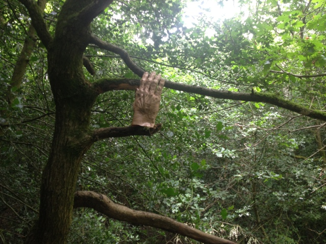 A fake hand sits high in a tree