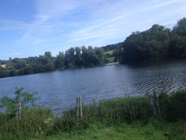 A view out across a lake