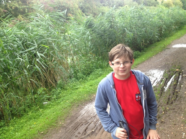 Sam stands on a grassy path surrounded by reeds and bushes on all sides