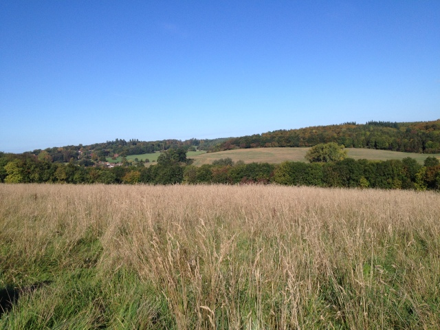 This picture shows a sweeping vista of hills and countryside. To the left of the shot some pretty cottages nestle in the landscape.