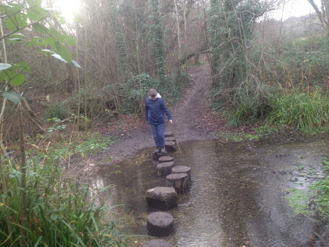 Sam crosses the river using stepping stones.