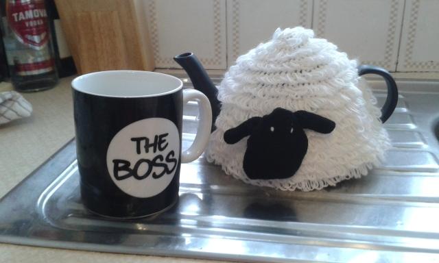 Sheep Cosy