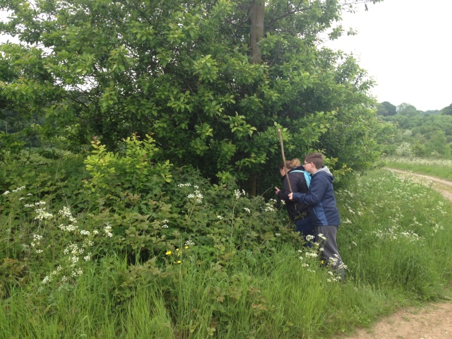 Sam and Shar try to fight their way in through the undergrowth to get to a cache.